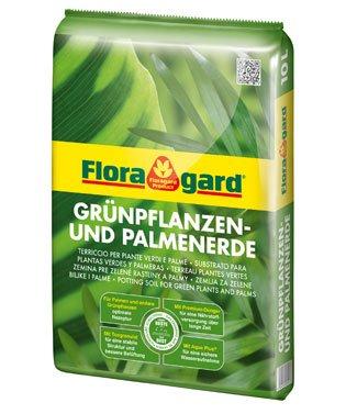 Terreau pour plantes vertes