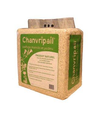 Chanvripail