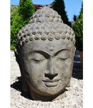 Tête de Bouddha h 75