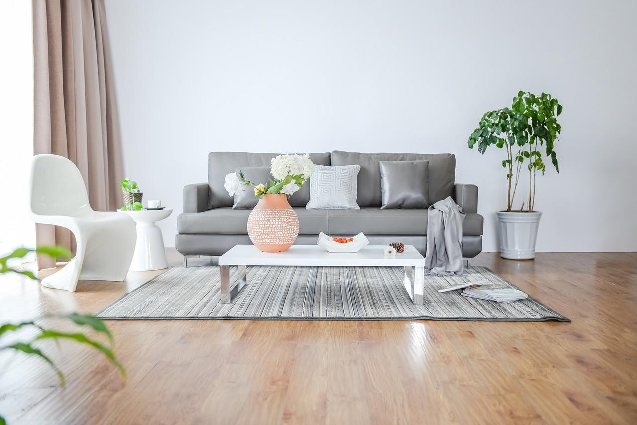 sonofep_interieur_plantes