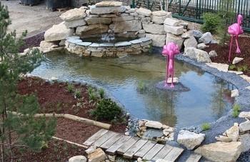 Cr er et entretenir un bassin sonofep for Bache pour bassin a poisson gamm vert