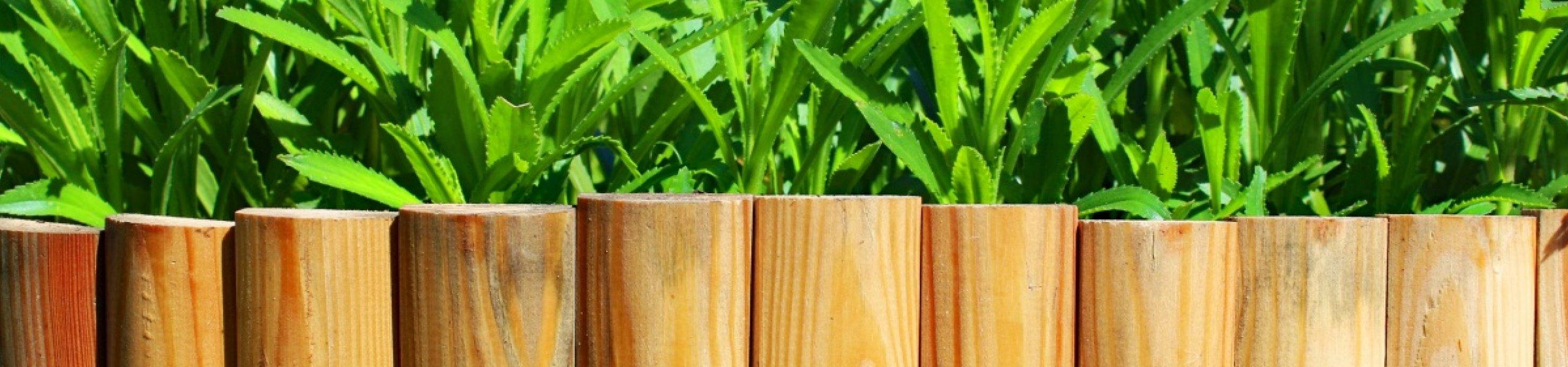 Bordure en mélèze huilé pour jardin