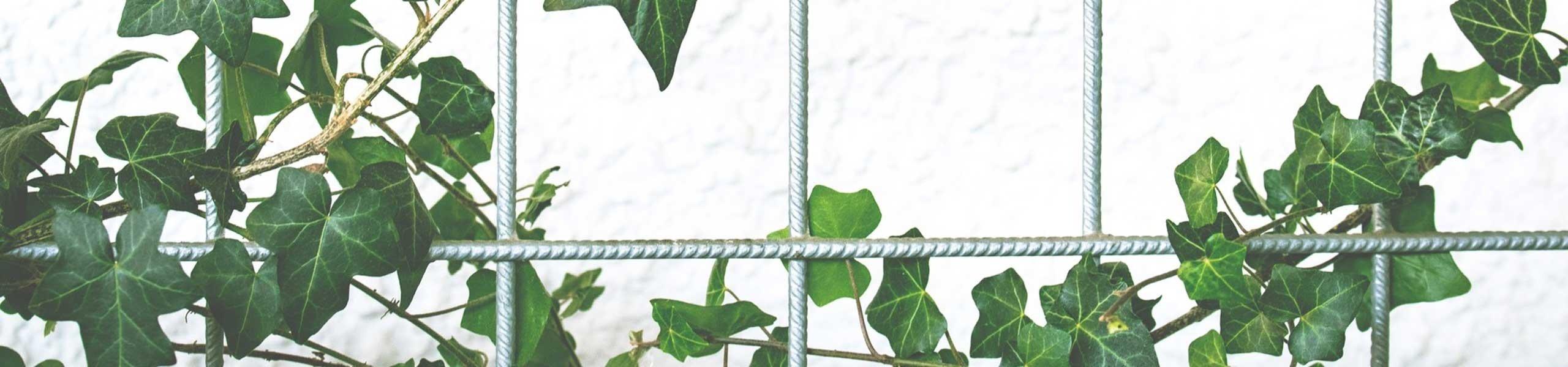 Structures métalliques pour jardin