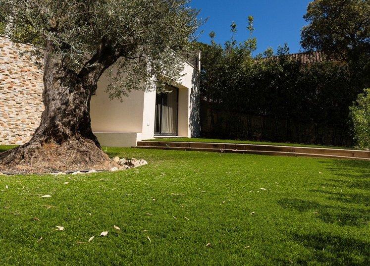 Gazon synthétique au pied d'un olivier