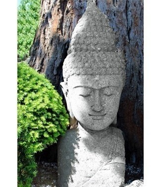 Buste de Bouddha h 100