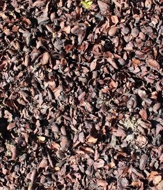 Coques de cacao 120 litres (l)