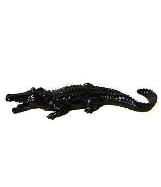 Crocodile noir Noir L 116 x h 25