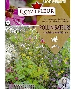 Mélange fleuri Mellifère pour prendre soin des pollinisateurs