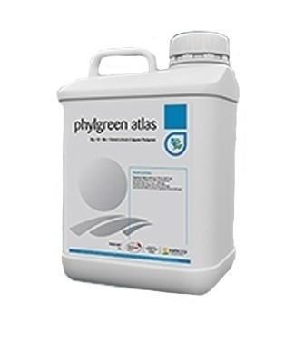Engrais liquide Phylgreen® Atlas 10 litres (l) 10 kg