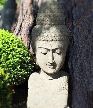 Statue tête bouddha