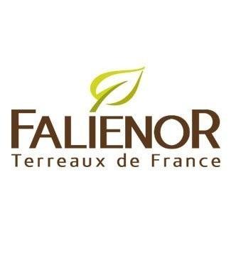 Logo Falienor