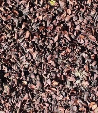 Paillage avec coque de cacao